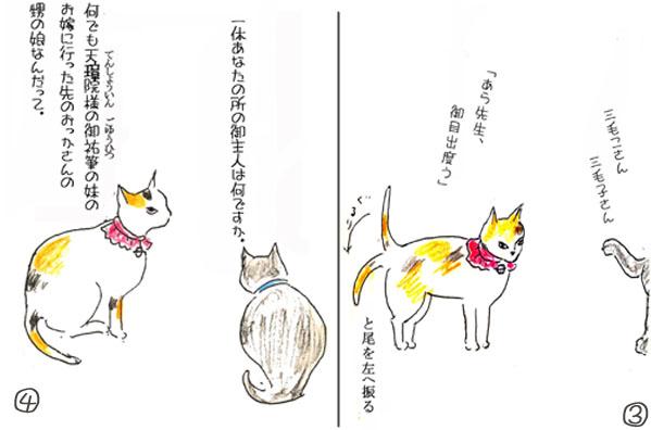 三毛子34のコピー