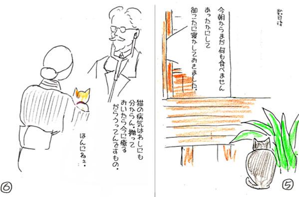 三毛子56のコピー