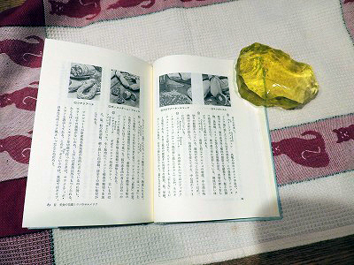 田中千博さんの本DSCN9783