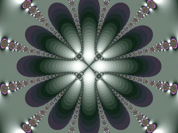 08-Cap-006317.jpg