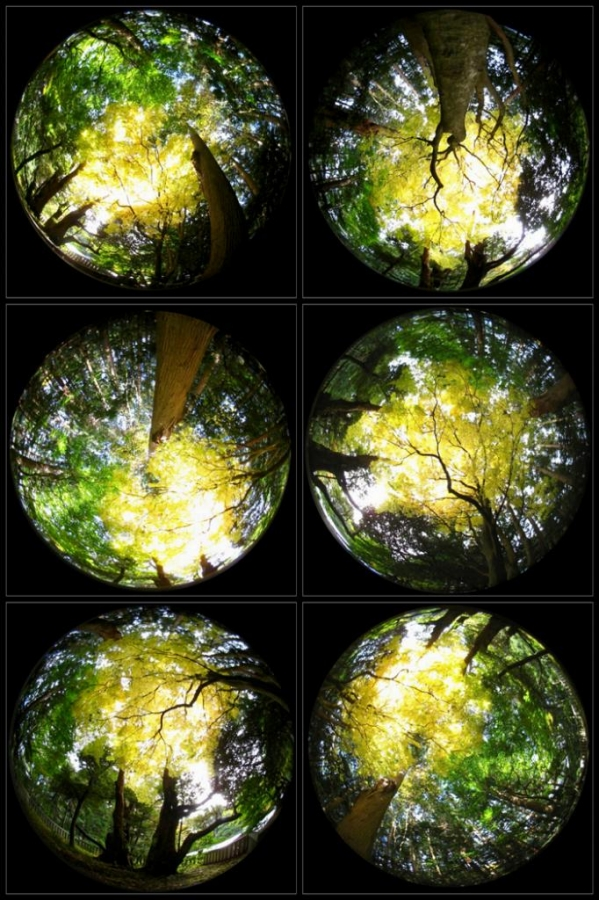 20141114-03-Desktop.jpg