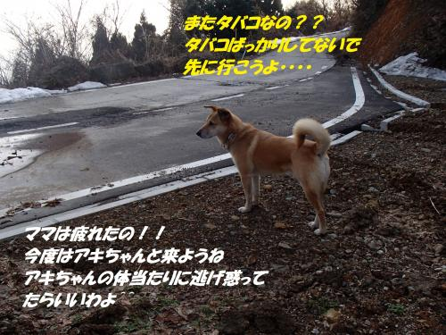 P1310485_convert_20140201083545.jpg
