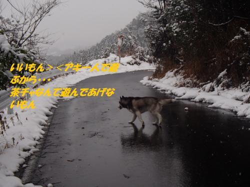 P2060607_convert_20140207081501.jpg