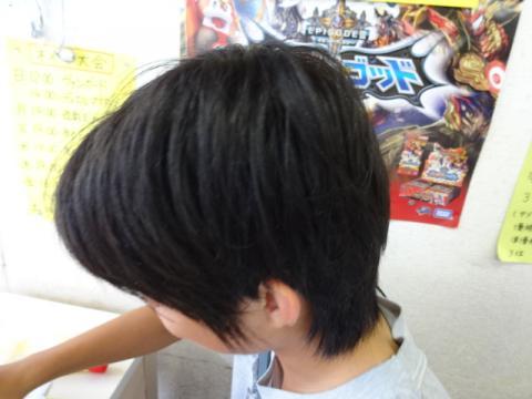 DSC03622_convert_20130705125348.jpg