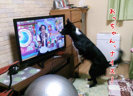 DSC_6808aquow45.jpg