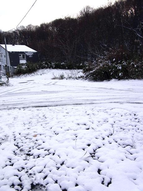 20131112積雪