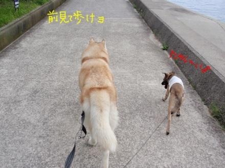image_20130720160559.jpg