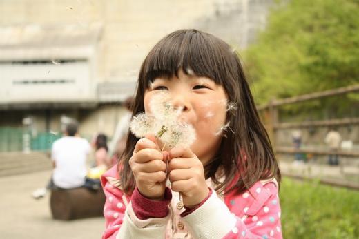 2013.05.03 温井ダム 041