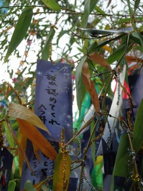 2013.06.30 下松健康パーク 179