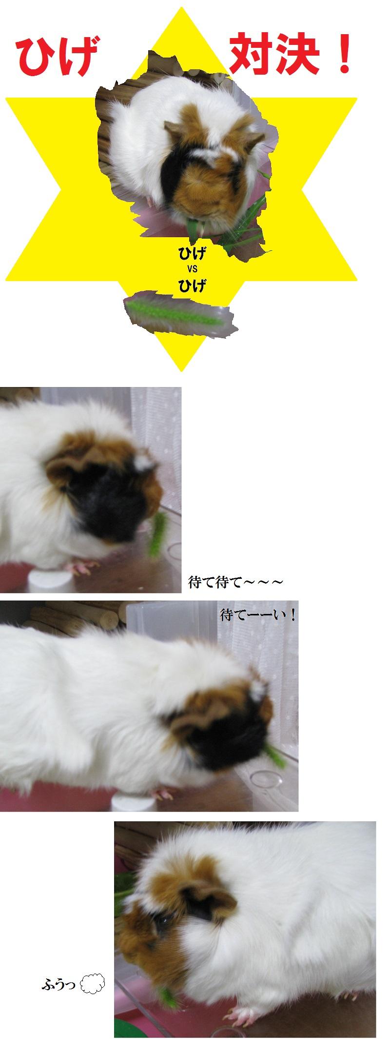 IMG_ひげ対決2646