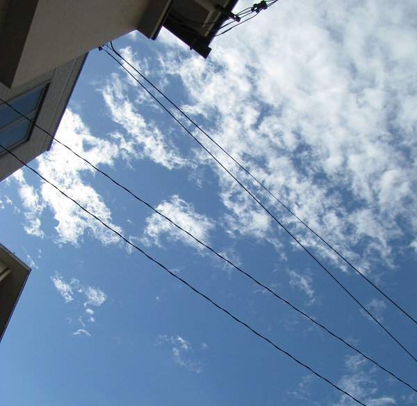 IMG_3046 青い空♡