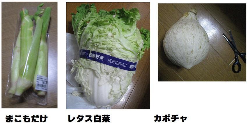 IMG_3355 野菜