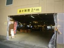 IMGP1709.jpg