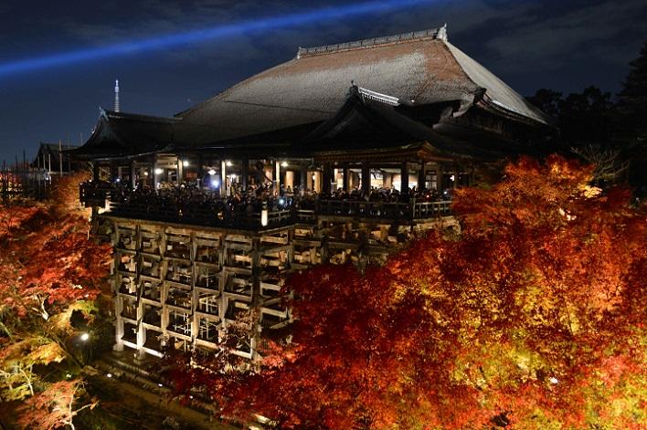 DSC_1281 清水寺ライトアップ2013年秋