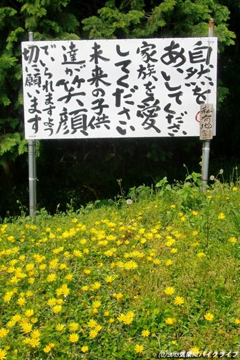 130518S-yamashiro