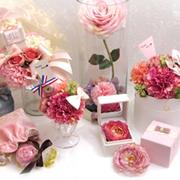 img_product_295850632515fdbb511b78.jpg