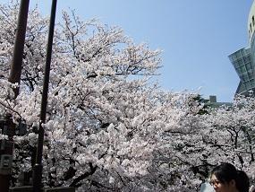noppblog20130405_003