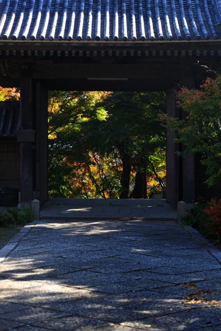 2014-11-13_0013-430.jpg