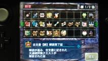 MH4G 勲章 G級ランク-1 1105