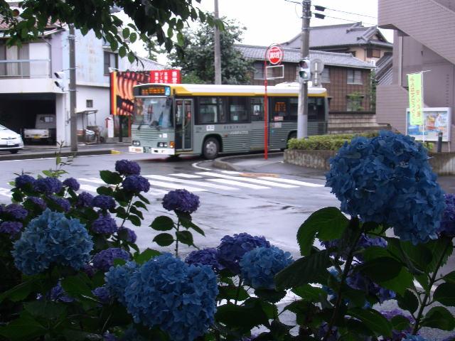 PIC_6127.jpg