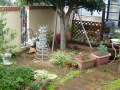 Numphea の庭
