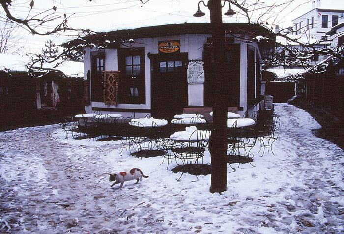04サフランボル2005