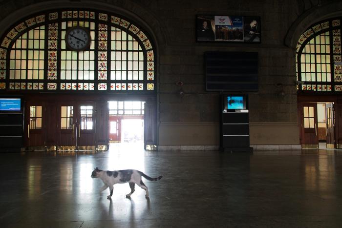 11ハイダルパシャ駅2013