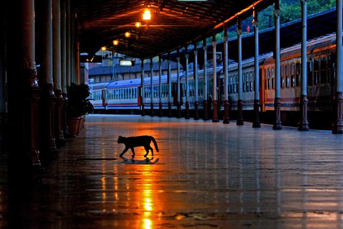 12シルケジ駅2010