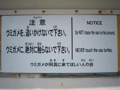 阿真ビーチ(座間味)