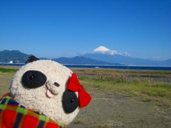 ばぶちゃん三保の富士と