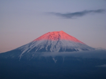 田貫湖からの富士山02