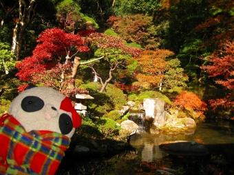 修禅寺の庭園