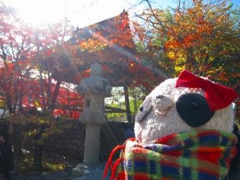 ばぶちゃん修禅寺の境内にて02