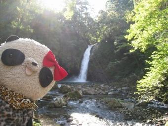 まぶしい浄蓮の滝