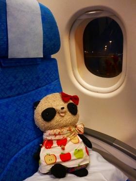 ばぶちゃん飛行機内にて