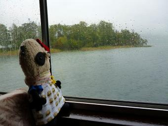 ばぶちゃん阿寒湖を眺める