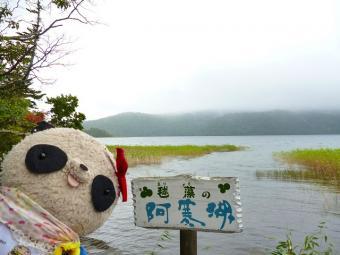ばぶちゃんマリモの阿寒湖にて