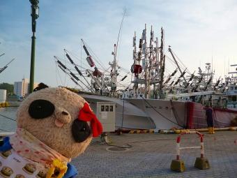 ばぶちゃん釧路港にて