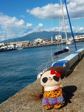 おばぶ沼津港にて富士山と
