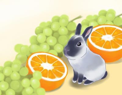オレンジマスカットF