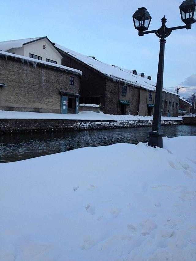 みきちゃんは北海道へ旅行に行った