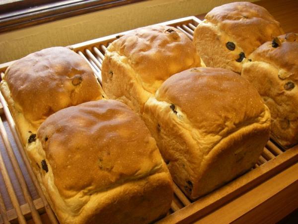 s荻パン時間2ブドウパン