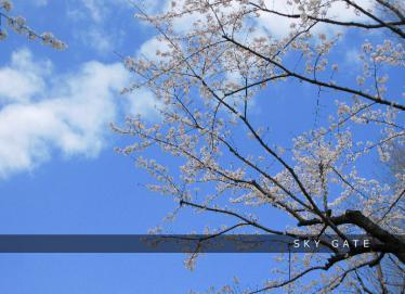 2013_03_27_4.jpg
