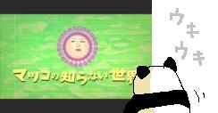 34_20141022113721c82.jpg