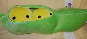 豆抱き枕4