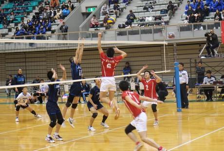 20141102 春高決勝 (9)