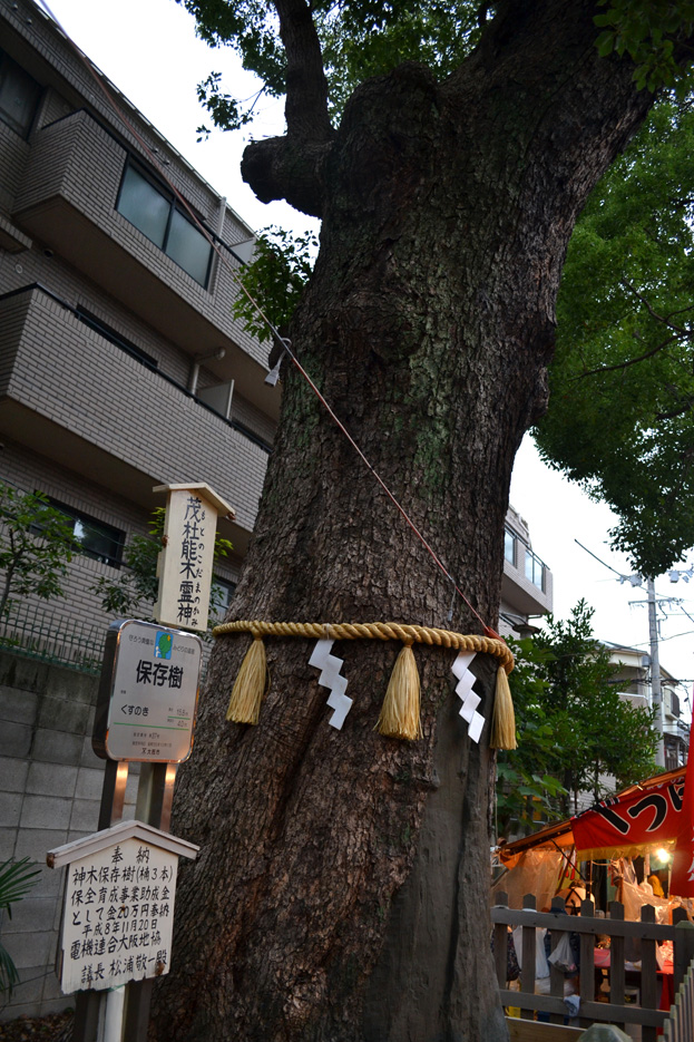 matsuri10_DSC_0567.jpg