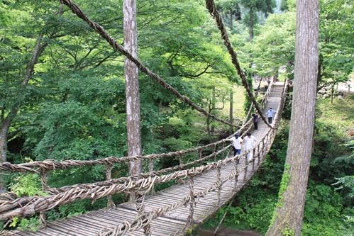 かずら橋全景