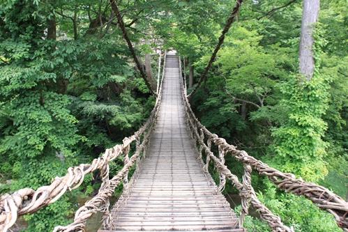 かずら橋眺め