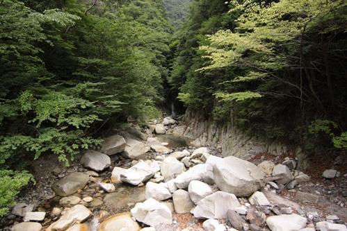吊り橋から望む滝